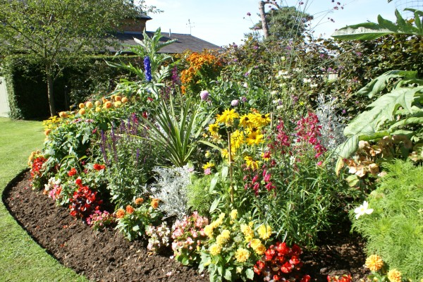 Herbaceous flower bed
